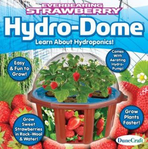 Dunecraft Everbearing Strawberry Hydro-Dome Science Kit