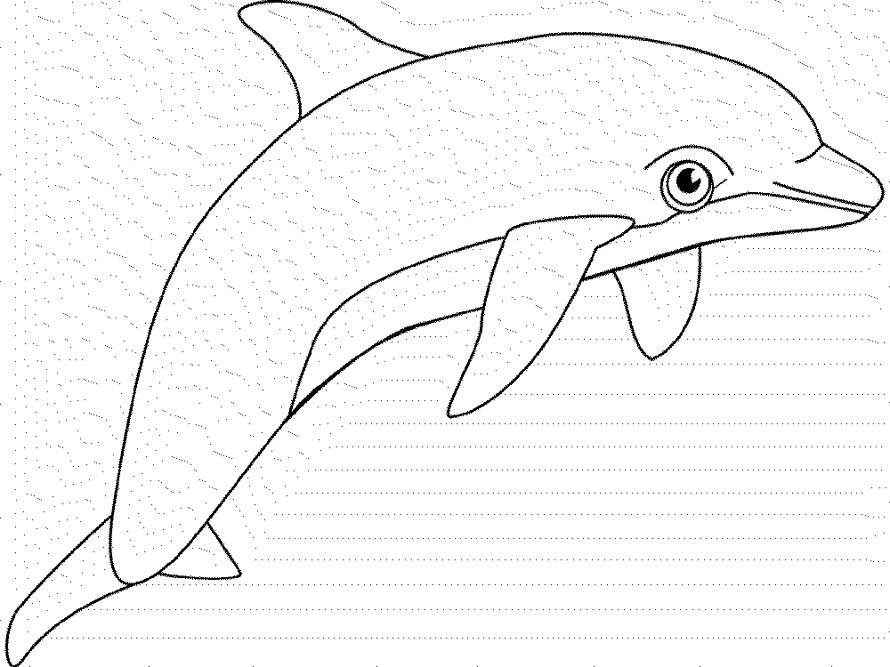 coloring pages whales dolphins