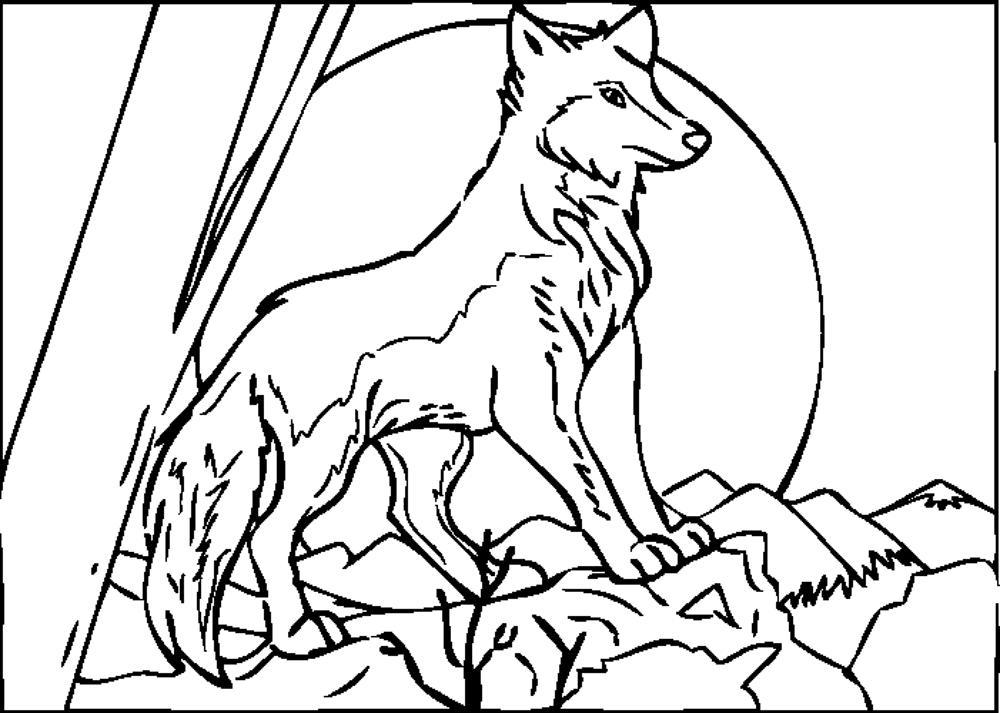 coloring pages wolf - Peter Wolf Coloring Pages