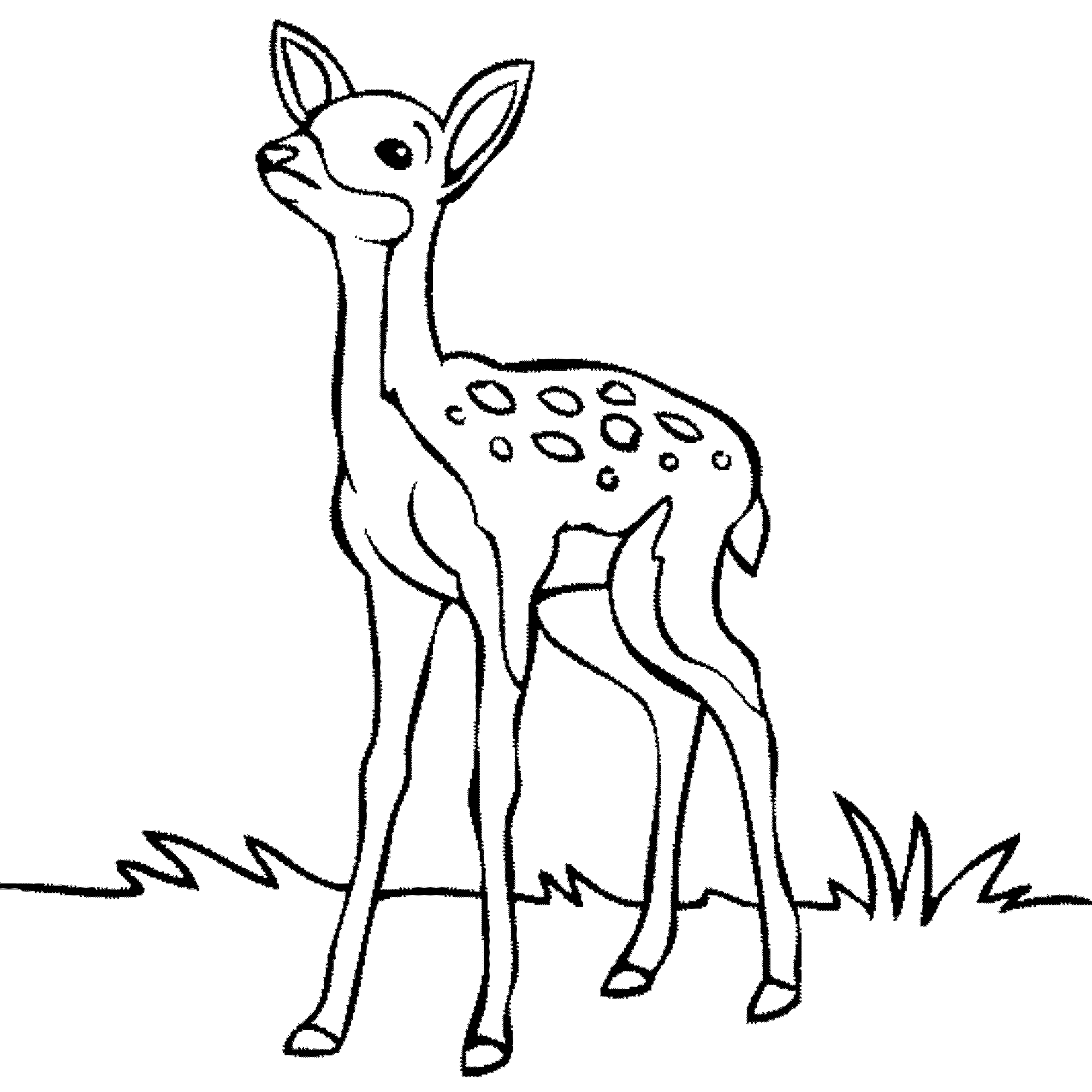 check - Baby Forest Animals Coloring Pages