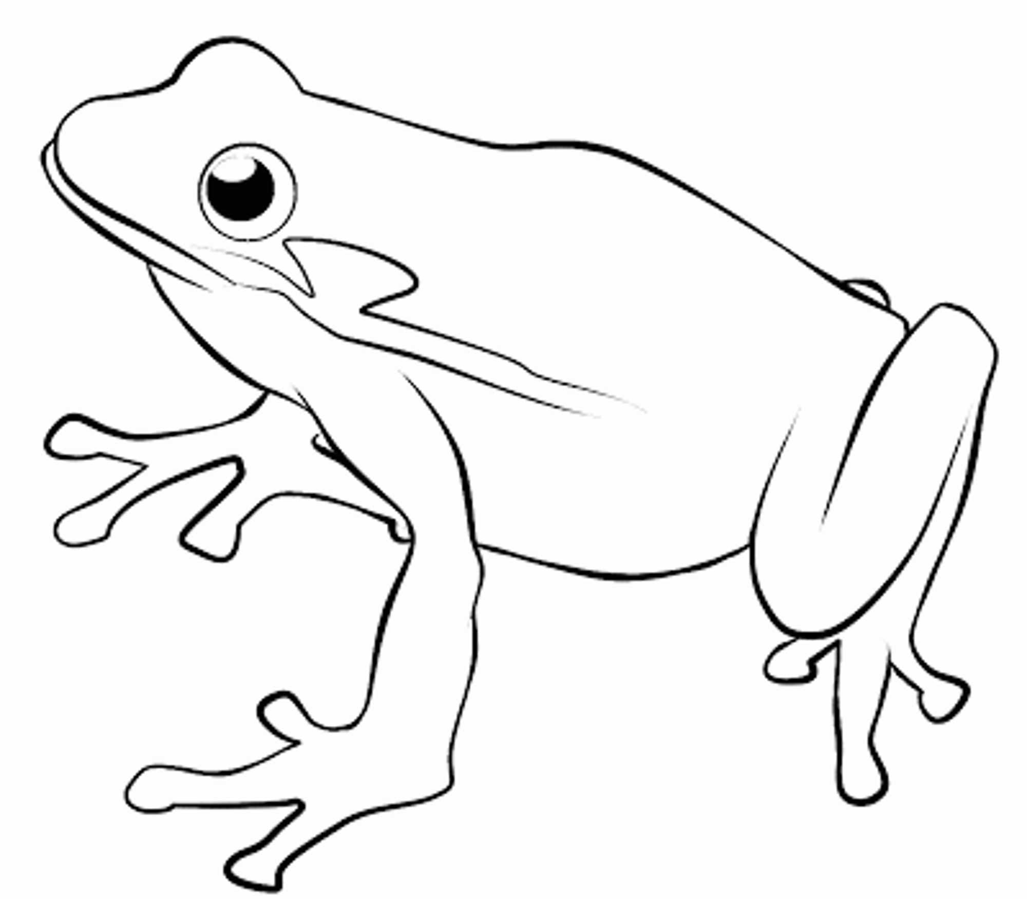 Print download frog coloring pages theme for kids for Free printable frog coloring pages