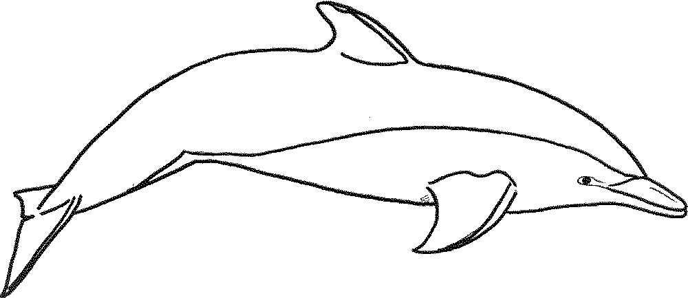 printable-dolphin-coloring-pages | | BestAppsForKids.com
