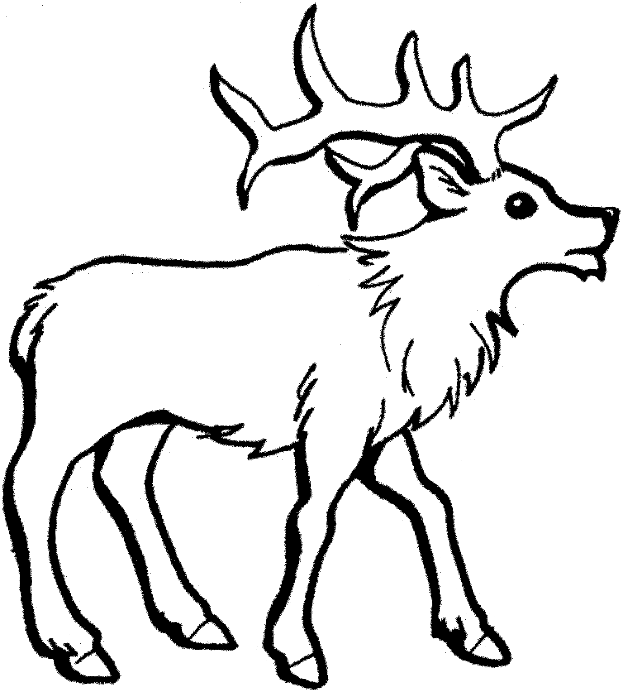 how to draw a reindeer easy
