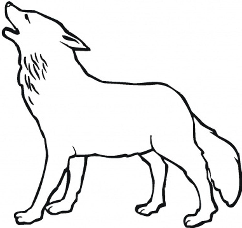 Wolf Coloring Pages Theme Best