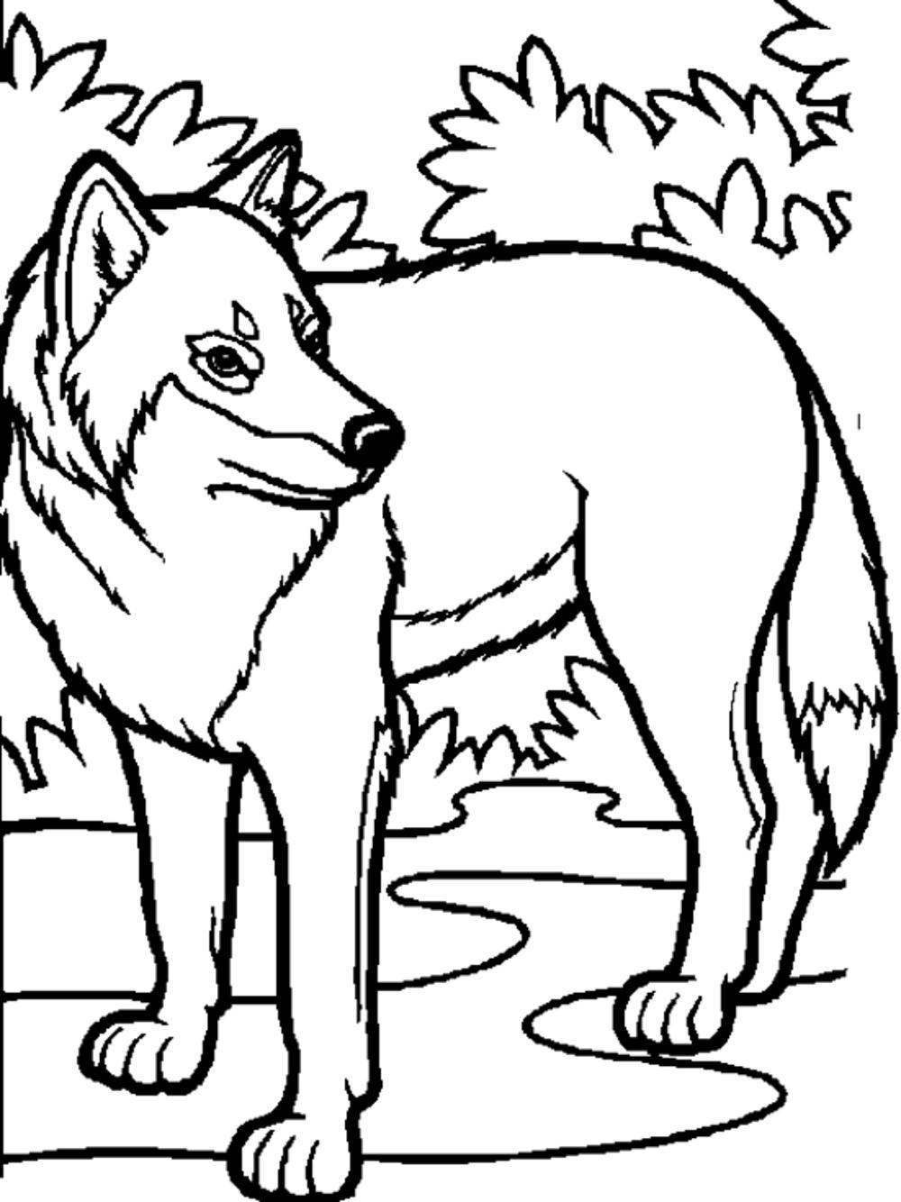 coloring pages wolves - photo#11