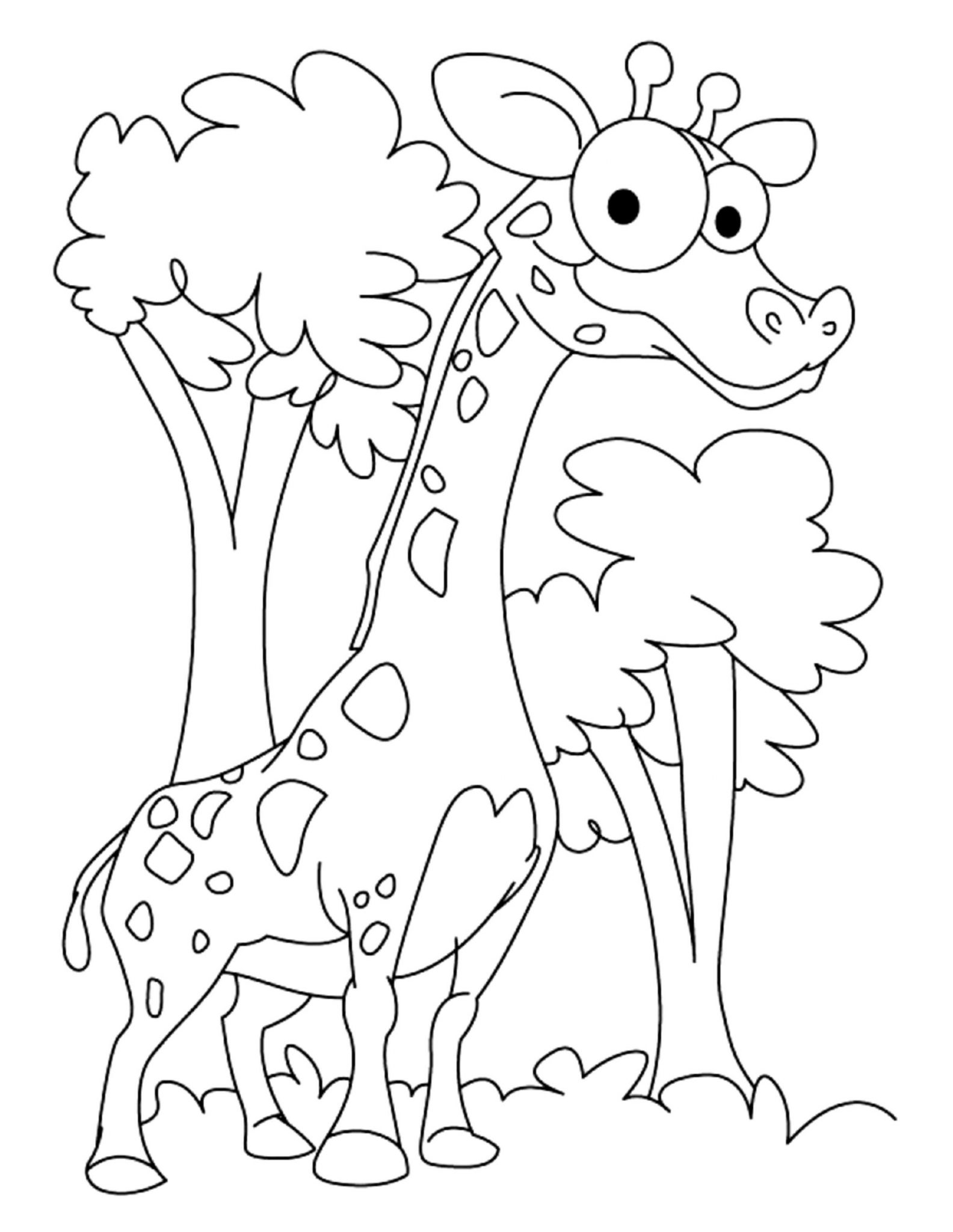 print amp download giraffe coloring pages for kids to have fun