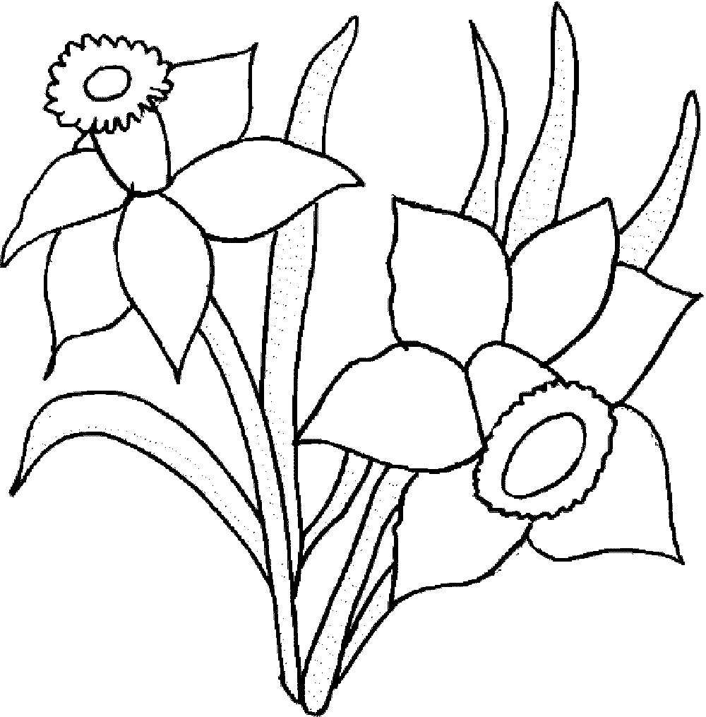 outline pictures flowers coloring pages for kids | Print & Download - Some Common Variations of the Flower Coloring Pages