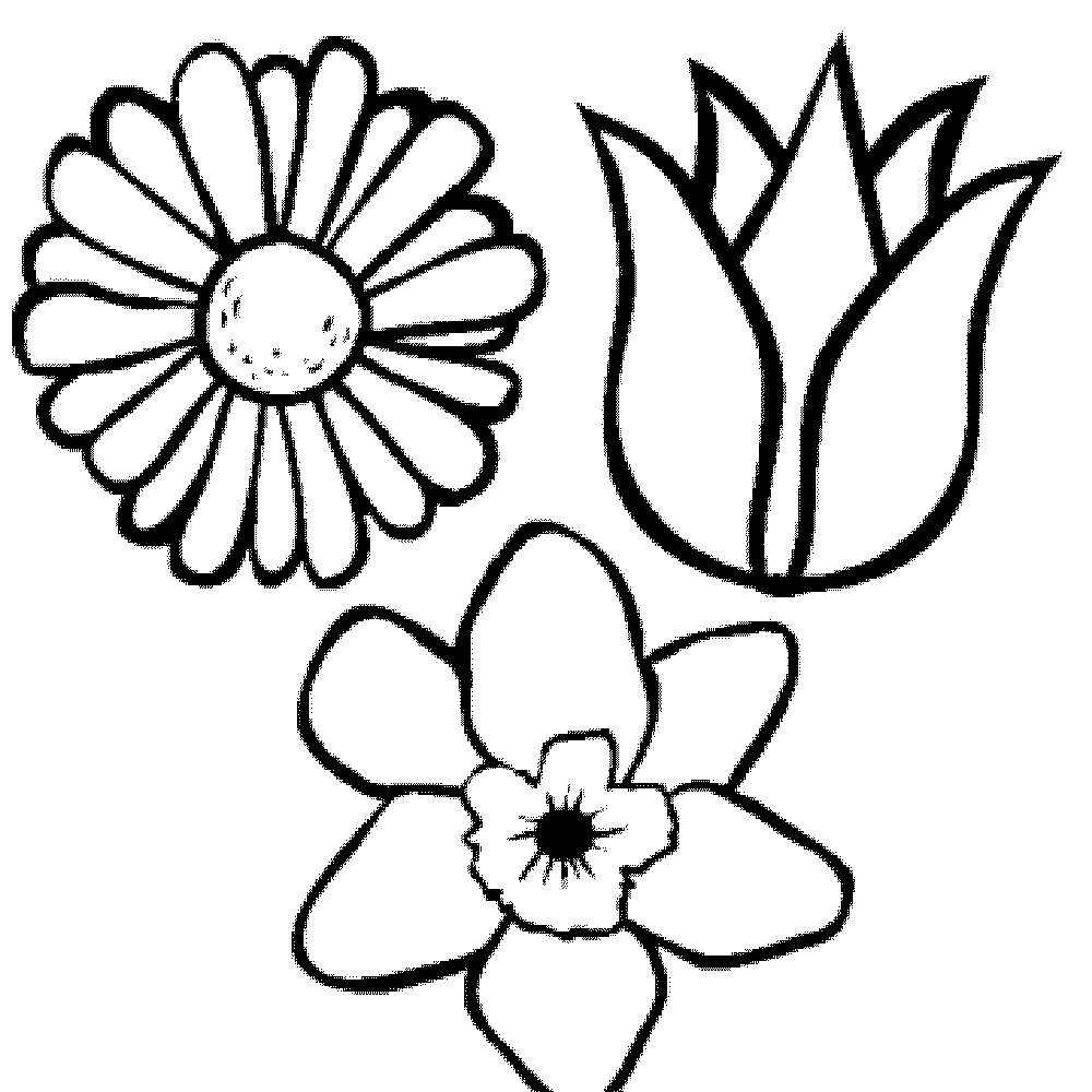 Charming Coloring Page Flower Head Pictures Inspiration - Entry ...