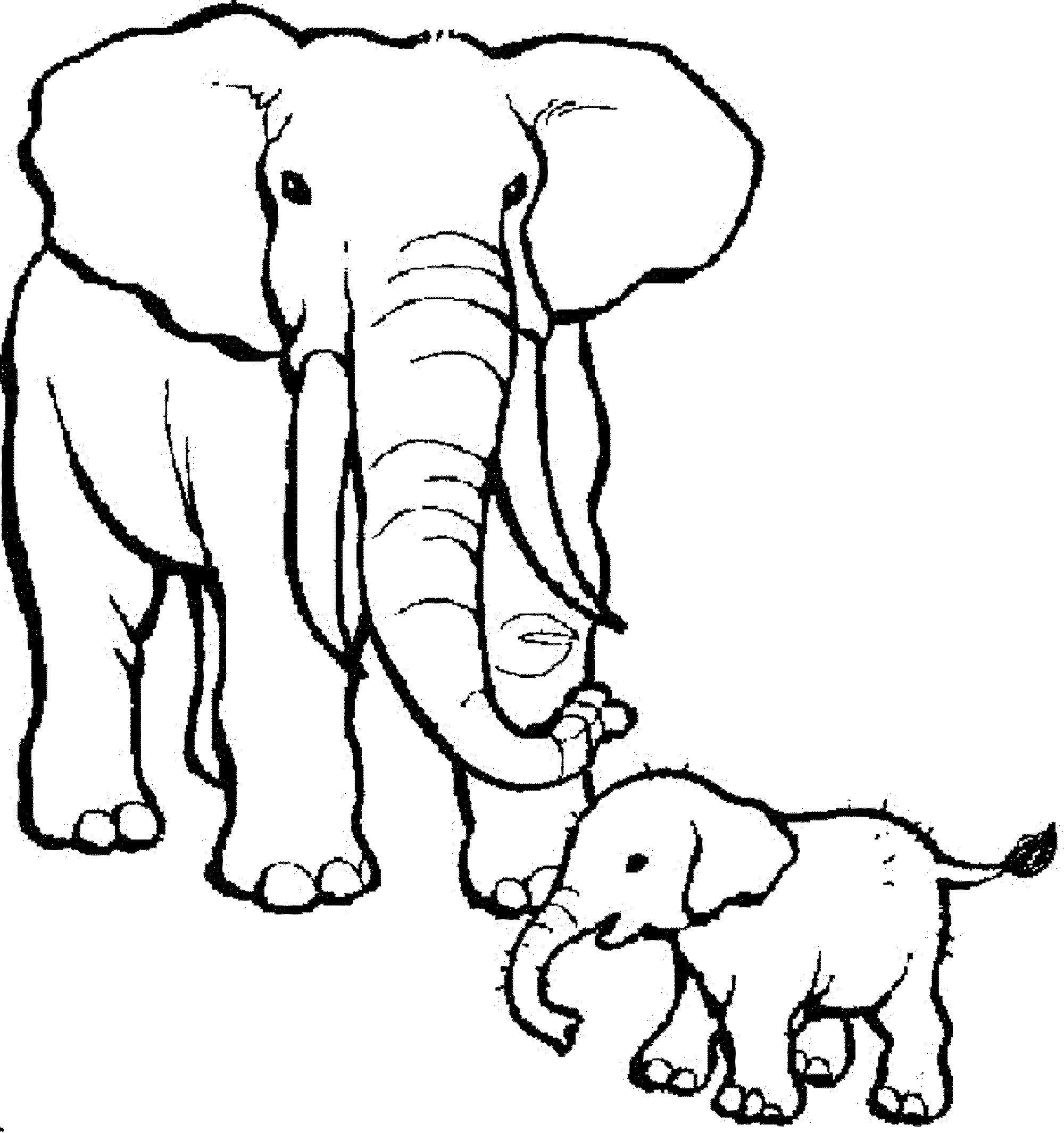 coloring pages of elephants - Free Elephant Coloring Pages