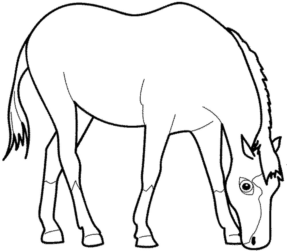 coloring book pages of horses | Fun Horse Coloring Pages for Your Kids Printable
