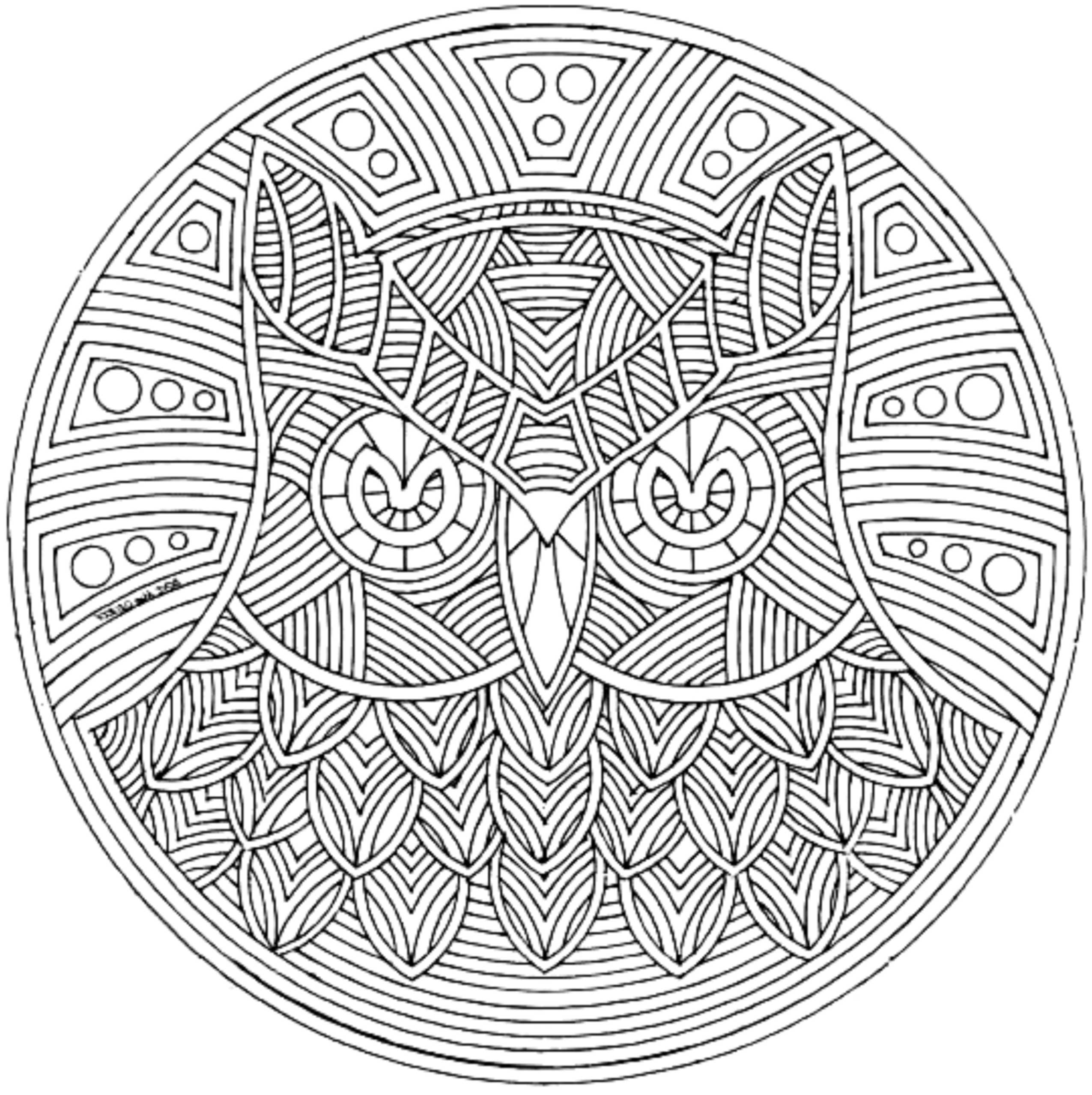 Uncategorized Complex Coloring Page print download complex coloring pages for kids and adults owl