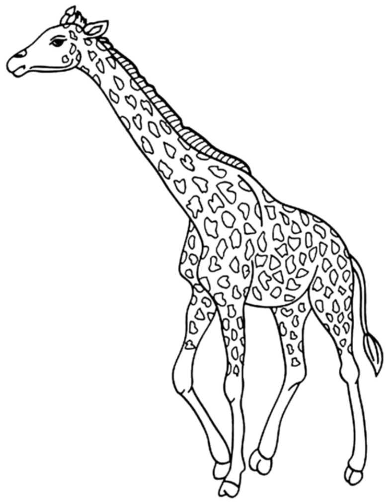 cute giraffe coloring pages BestAppsForKidscom