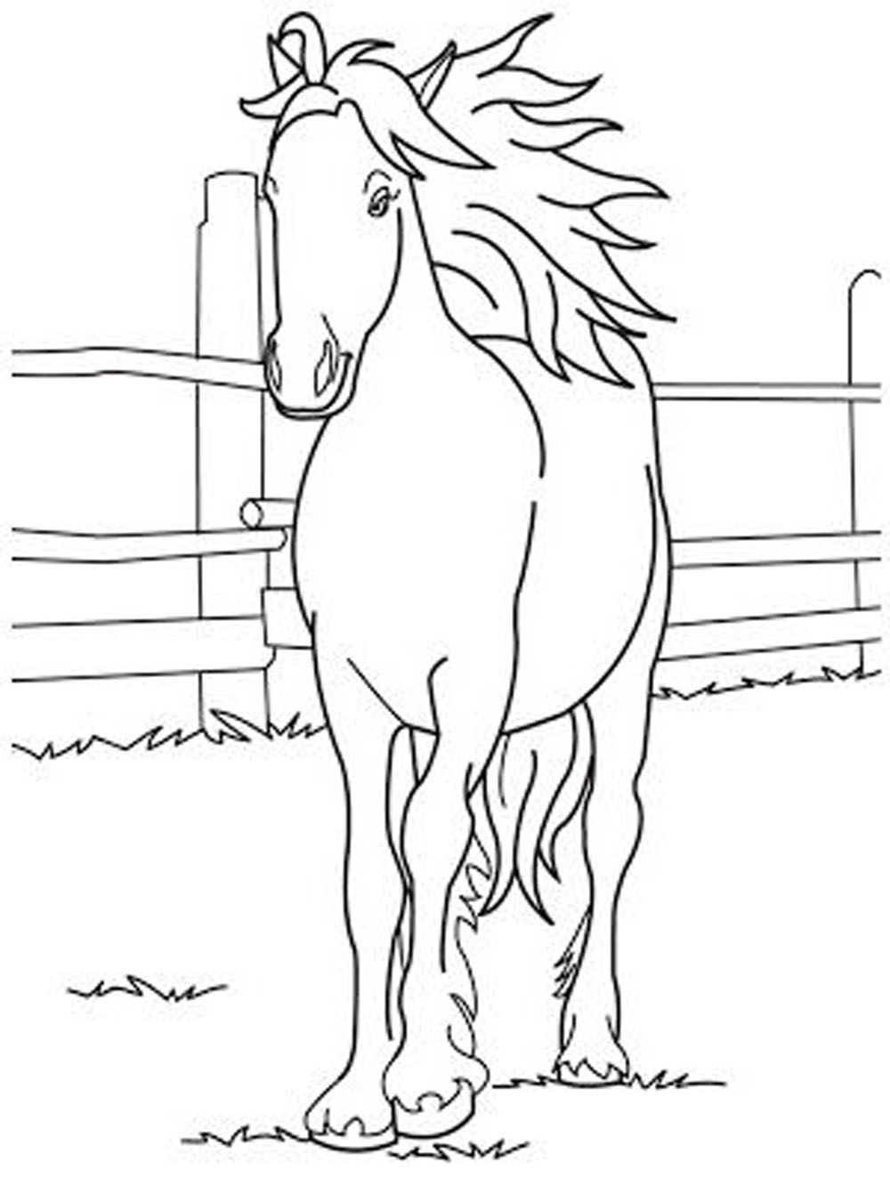 cute horse coloring pages - Horse Coloring Pages For Kids