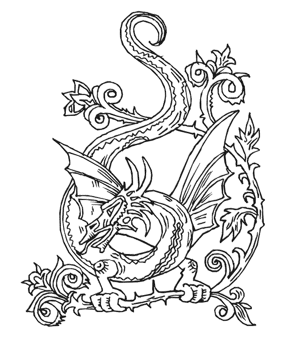 Color the Dragon Coloring Pages