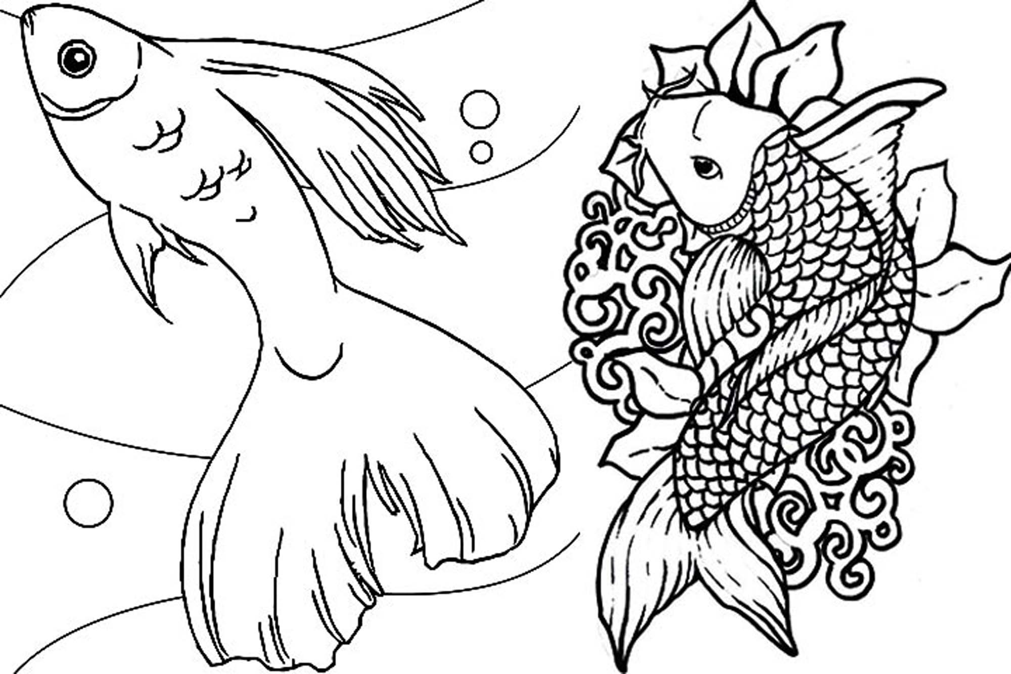 fish coloring pages for adults - Koi Fish Coloring Pages