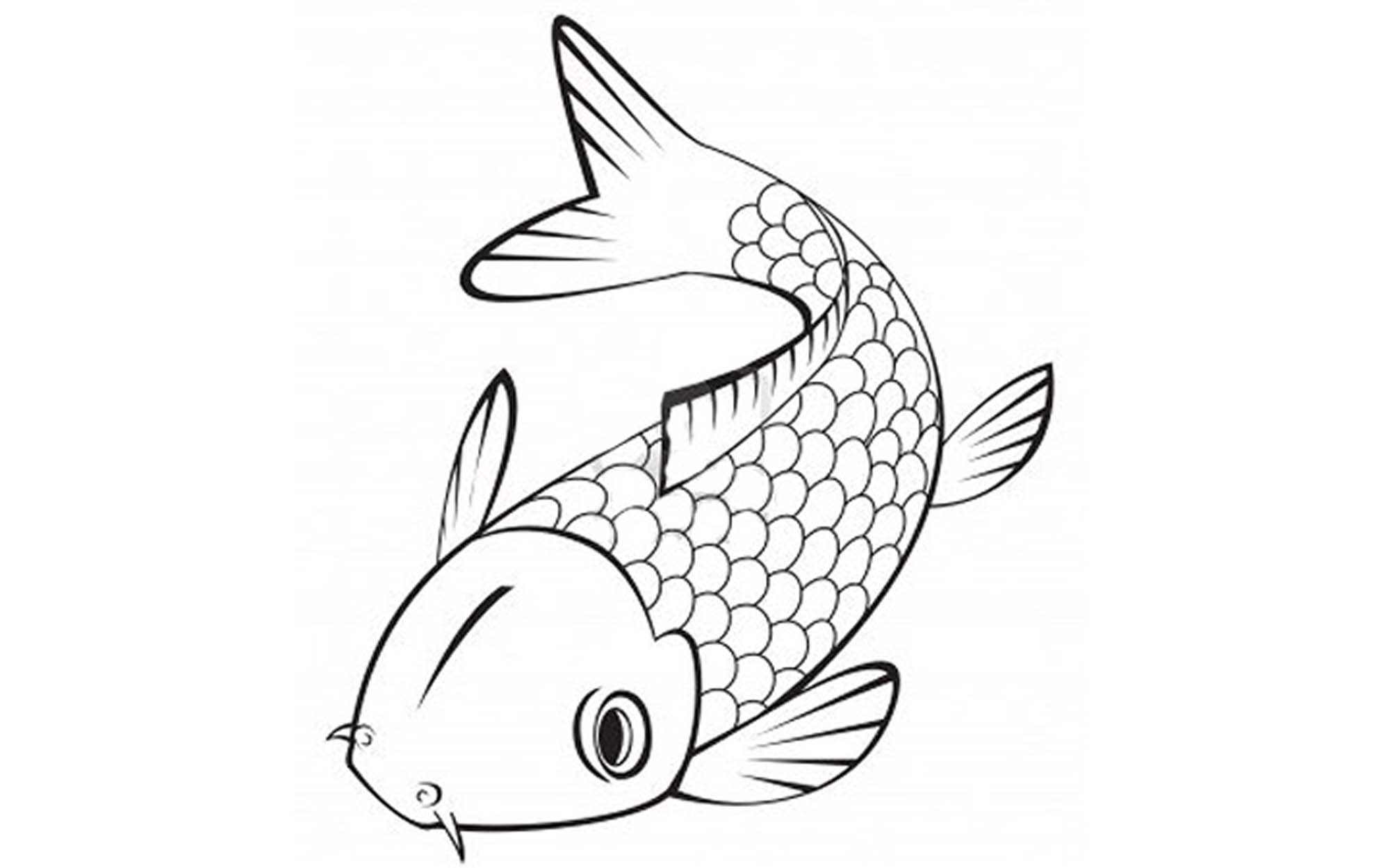 Fish printable coloring pages fish coloring pages you for Printable fish coloring pages