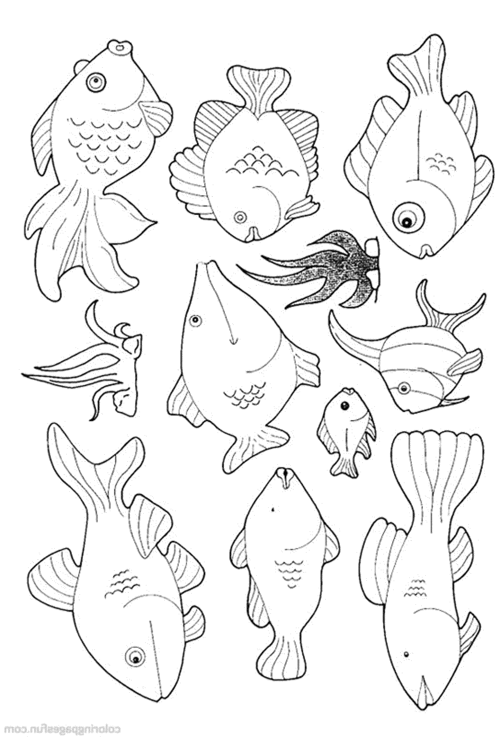fish printable coloring pages - Coloring Page Of Fish