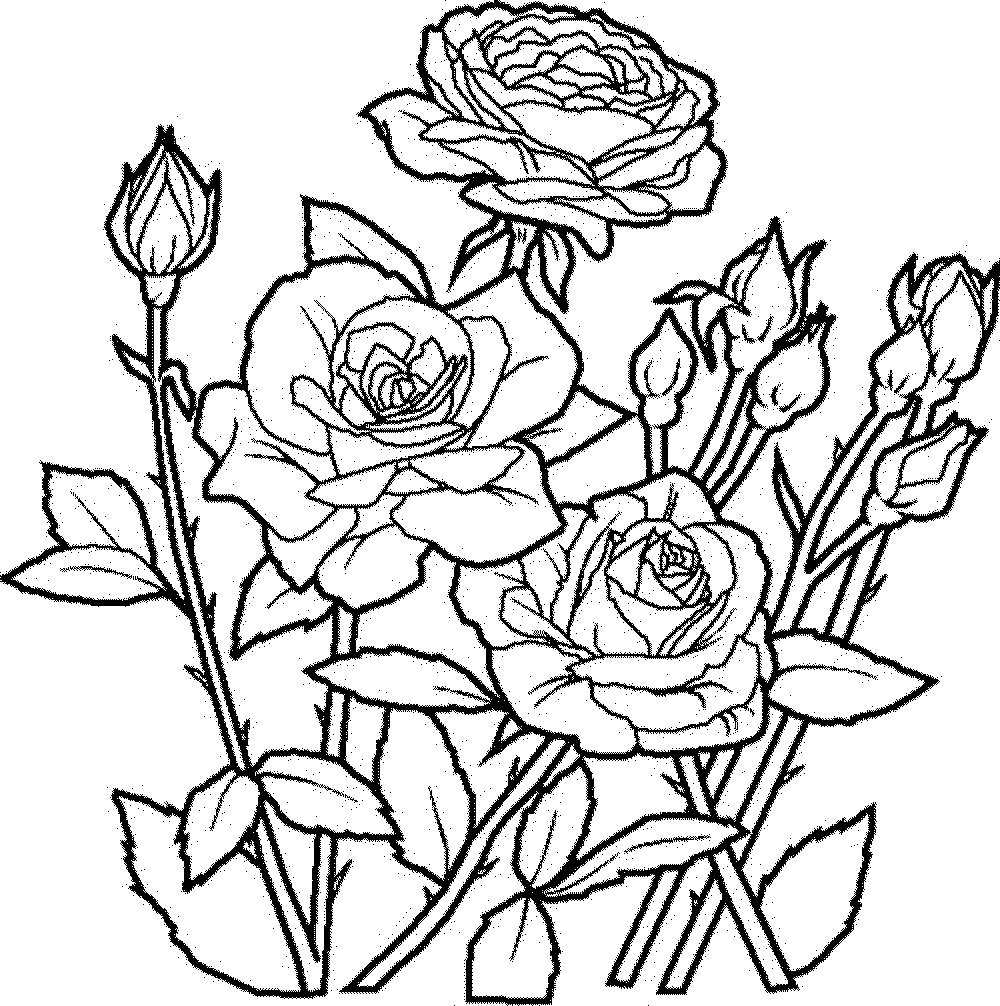 Mandala Coloring Pages Flowers | Coloring Page