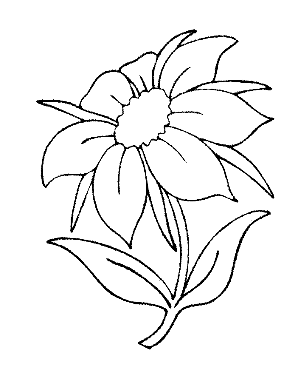 gallery of some common variations of the flower coloring pages