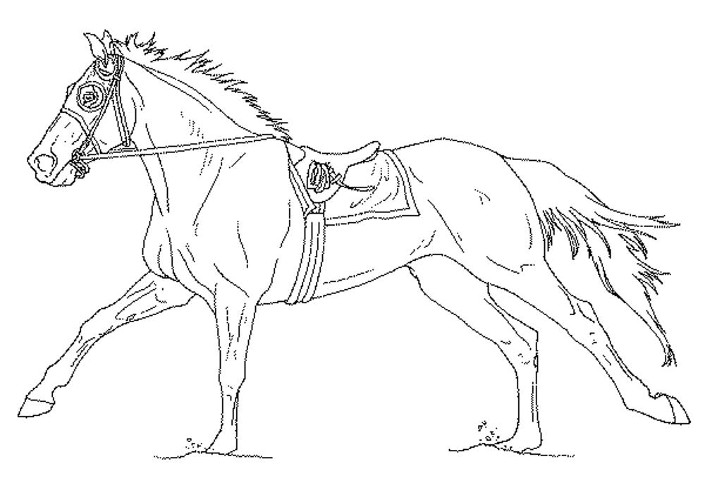 free-coloring-pages-of-horses | | BestAppsForKids.com