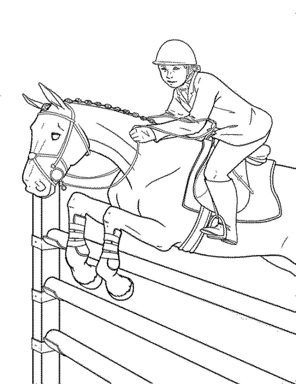 Gallery Of Fun Horse Coloring Pages For Your Kids
