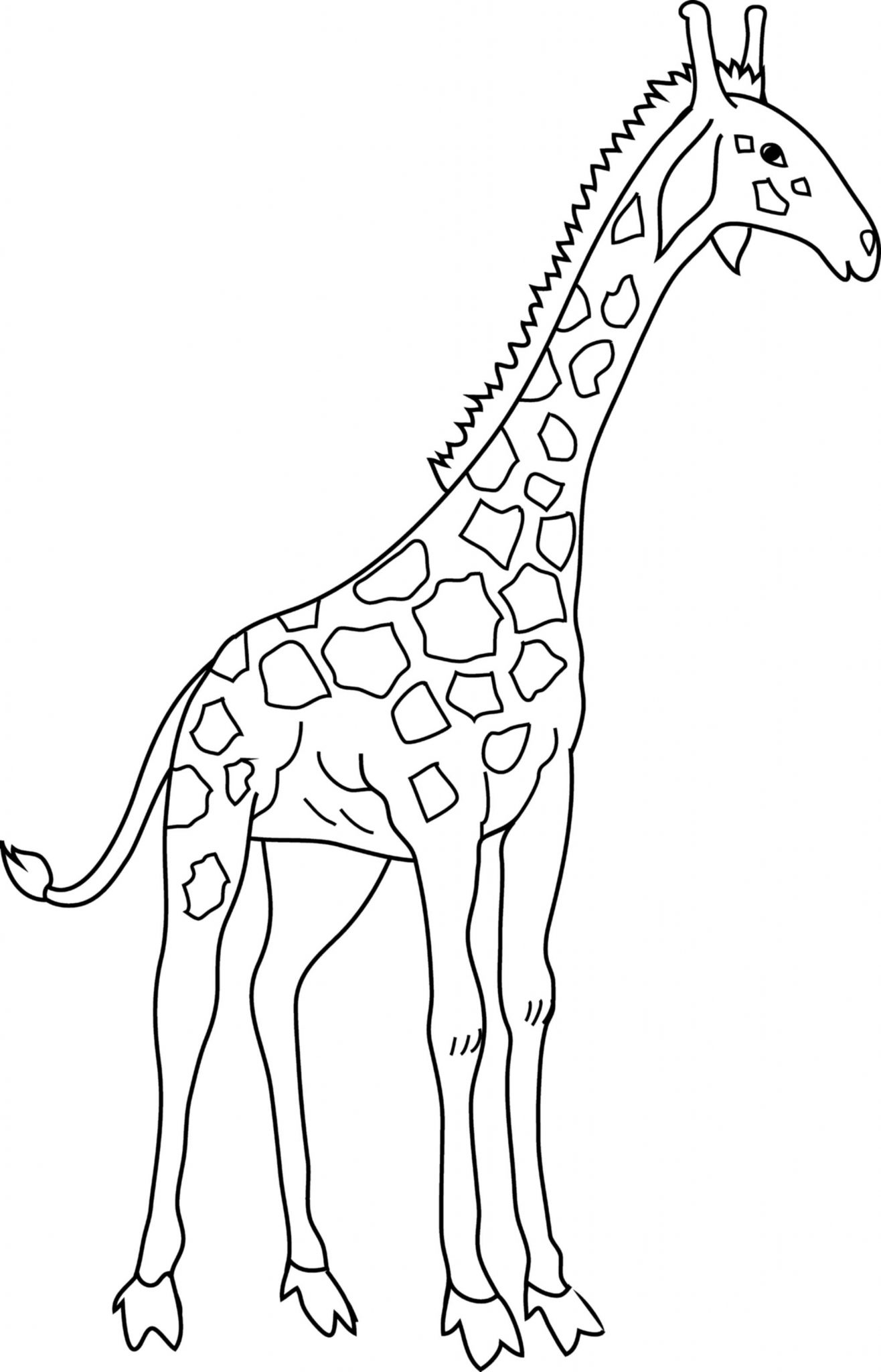 Giraffe Coloring Pages For Kids To Have Fun