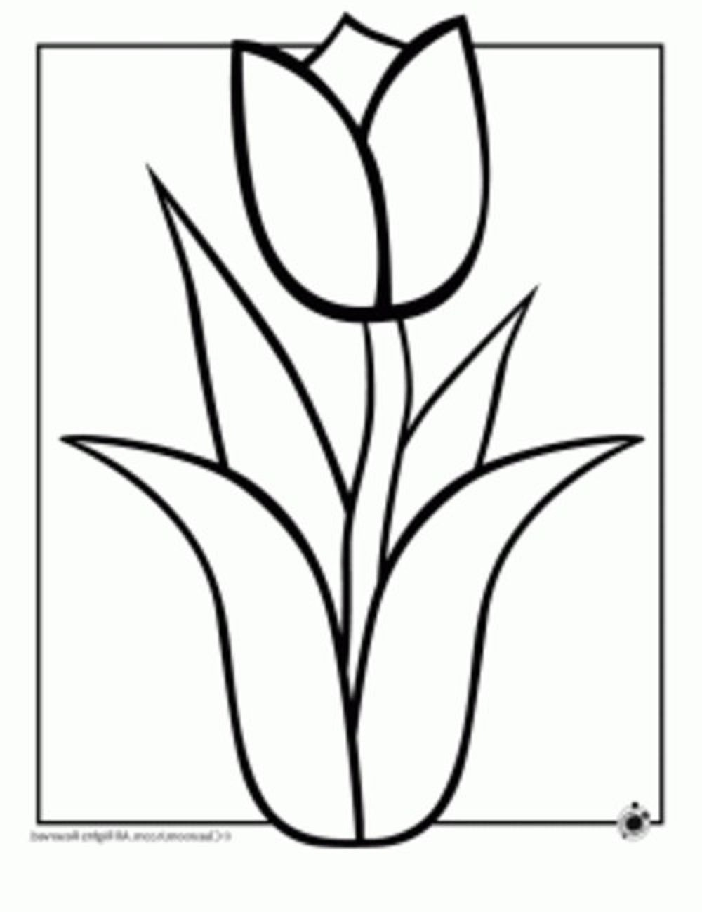 hawaiian flowers coloring pages BestAppsForKidscom