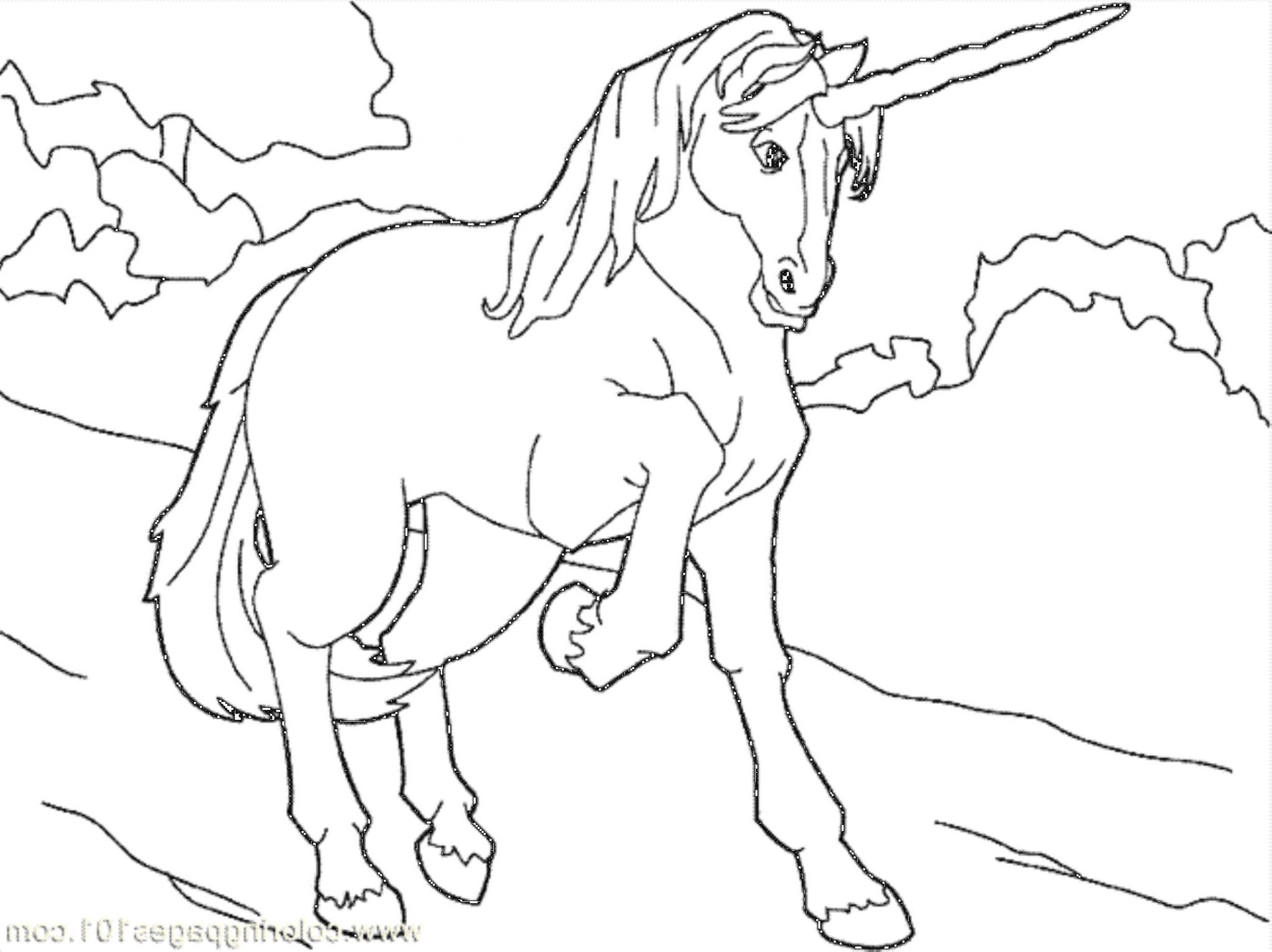unicorns coloring pages for kids | Print & Download - Unicorn Coloring Pages for Children