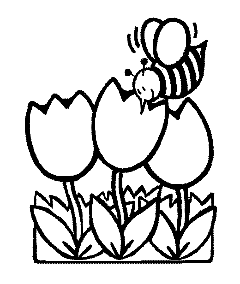 image relating to Printable Coloring Pages Flowers called printable-coloring-internet pages-bouquets