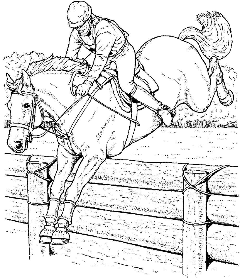 race horse coloring pages - Horses Printable Coloring Pages