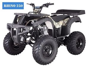 BRAND New Adult Size 250 Adult Size ATV