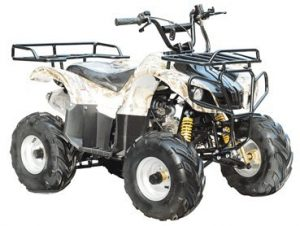 TAO TAO - Brand New 4 Wheeler fully automatic engine with REVERSE