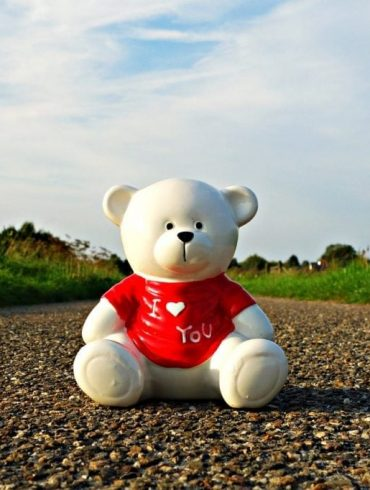 Top 10 Teddy Bears