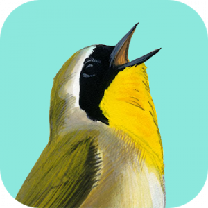 Song Sleuth Bird Song Analyzer