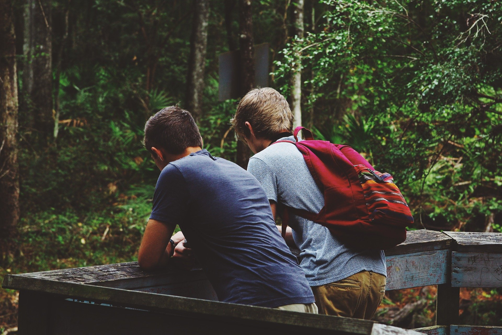 two young men on a nature overlook